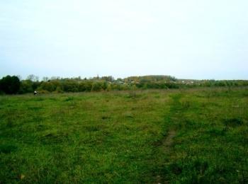 Коттеджный поселок Земля Возрождения Палихово